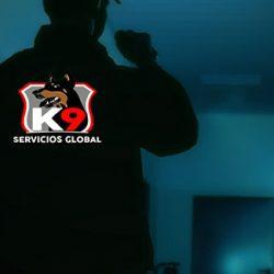 SERVICIOS GLOBAL K9 | Valencia
