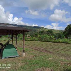TERRENO EN VENTA EN MACUNDO   Montalbán Carabobo