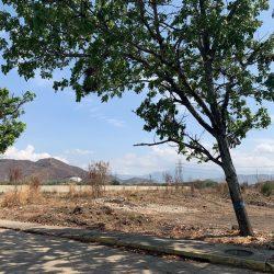 METROINMUEBLES   EN VENTA TERRENO  EN LOS GUAYOS
