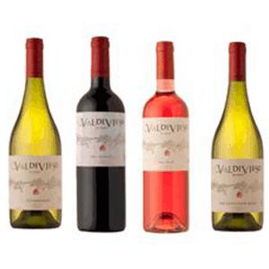 vino-valdivieso_candelarias-norte_cercademy